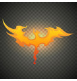 firebird phoenix realistic fire flames isolated vector image