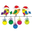 Hand-drawn funny christmas birds vector image vector image