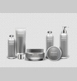 isolated luxury cosmetic products in bottles vector image