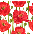 poppy seamless vector image vector image