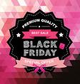 Poster Sale Black FridayTypography vector image vector image
