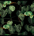 seamless pattern with monstera and chameleon vector image vector image