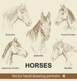 set hand drawing horses 4 vector image vector image