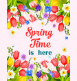 spring time flowers greeting card vector image vector image
