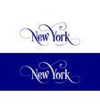 typography of the usa new york states handwritten vector image vector image