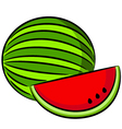 Water-melon vector image