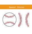 baseball stitches on a white background design vector image vector image