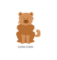 card dog breeds with chow-chow furish puppy vector image vector image