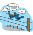 Cartoon of two birds talking on a telephone wire vector image vector image