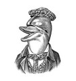 dolphin man in hat and suit marine mammal vector image