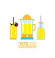 juicer glass of juice smoothie bottle organic vector image