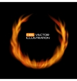 Naturalistic Fire Frame on Dark Background vector image vector image