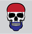 nederland flag head skull vector image