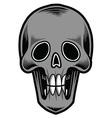 Skull-Tattoo vector image