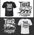 tshirt print with tiger roaring wild animal vector image