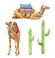 watercolor camel vector image vector image