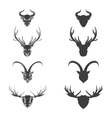 Animals horned head silhouette vector image vector image