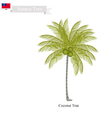 Coconut Tree A Native Tree of Samoa vector image vector image