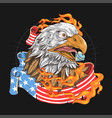 eagle usa flag fire vector image