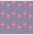 Flamingo set Seamless Pattern Exotic tropical bird