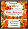 hello autumn banner set fall nature season vector image vector image