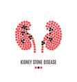 kidney stone disease pills poster vector image vector image