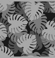 monstera gray seamless pattern tropical leaves vector image