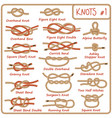 set rope knots hitches bows bends vector image vector image