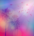 Silhouette of palm trees and birds sky pink vector image vector image