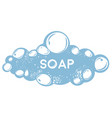 soapsuds laundry or bath soapy bubbles hygiene vector image