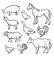 farm animal drawing set domestic and agriculture vector image vector image