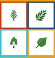 flat icon nature set of linden timber jungle and vector image