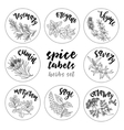 Spices and herbs labels Contour herbal set vector image