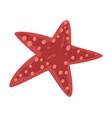starfish marine life element sea or ocean vector image