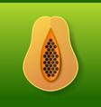 sweet papaya and cut papaya tropical exotic fruit vector image