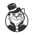 Cat gentleman vector image vector image