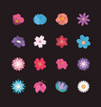 collection of pretty flowers vector image vector image
