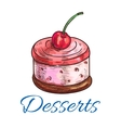 Desserts icon souffle buscuit vector image vector image