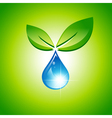 Green Leaf and Water Drop vector image vector image