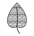line ethnic natural leaf with ornamental design vector image vector image