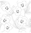 pansy flower on seamless background outline vector image vector image