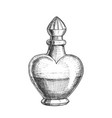 potion bottle in heart shape monochrome vector image