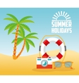 Summer design Holidays icon Colorful vector image vector image