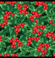 watercolor high quality christmas holly pattern vector image