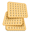 realistic cookies on white background Eps10 vector image