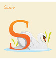 Animal alphabet with swan vector image