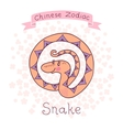 Chinese Zodiac - Snake vector image