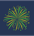 firework celebration salute vector image