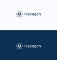 Hexagon futuristic dots logo vector image vector image