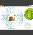 maze educational game with funny snail and lettuce vector image